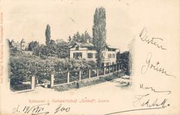 78404- Restaurant Und Gartenwirtschaft Eichhof Luzern 1900 - LU Lucerne