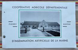 51 PIERRY Cooperative Agricole Departemental D'Insemination Artificielle De La Marne - Champagne - Ardenne