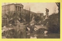 * Antwerpen - Anvers - Antwerp * (Nels, Ern Thill) Jardin Zoologique, Dierentuin, Zoo, Aquarium Extérieur, Buitenzicht - Antwerpen