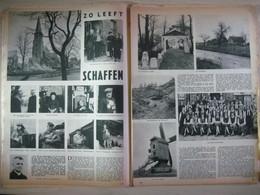 Zo Leeft Schaffen. Diest, Kempen, Hageland. (11.03.1954) - Revistas & Periódicos