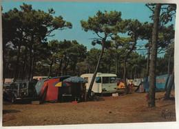 85 Fromentine 1971  Camping Municipal Dans Les Pins Tentes Caravanes 4L - Otros Municipios
