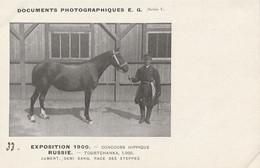 EXPO 1900 RUSSIE  TOURCHANKA Jument Race Des Steppes - Paarden