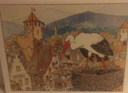 DG-7-L ASACE MERVEILLEUSE DE HANSI LA CIGOGNE - Alsace