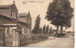 Betecom - Begijnendijk
