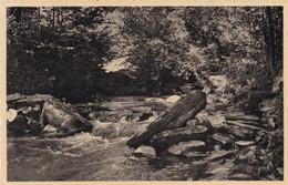 Vresse Sur Semois, La Ruisseau Du Petit Fays (pk72199) - Vresse-sur-Semois