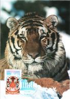 Carte Maximum Timbre De Service 134 UNESCO Tigre De Sibérie, TBE 1er Jour 07 12 2006 Paris (75) - 2000-09