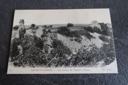 CPA - NOYERS Sur SEREIN (89) - Ruines De L'Ancien Château - Noyers Sur Serein