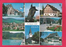 Modern Multi View Post Card Of Elgg,Winterthur,Zürich,Switzerland .A109. - ZH Zurich