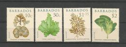 Barbados 2008 Seaweed Y.T. 1188/1191 ** - Barbados (1966-...)
