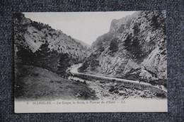 OLLIOULES : Les Gorges, La Route , Le Torrent Du D'ESTEL. - Ollioules