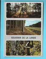 40-----SOUVENIR DE LA LANDE--multi-vues--voir 2 Scans - Unclassified
