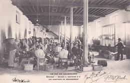 279739Epernay Caves De La Maison C. Gauthier Et Cie, Les Chantiers De Dégorgement Bouteilles (Timbre Postal 1905) - Epernay