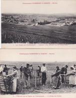 279778Reims, Champagne Pommery Greno Vignoble D'Ay - Le Fichage Des ëchalas (2 Cartes) - Reims