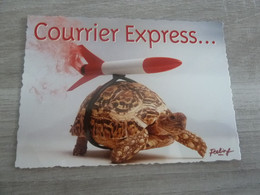 COURRIER EXPRESS .. EDITIONS COMBIER - ANNEE 2014 - - Humor
