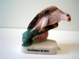 Fève Mate - Oiseaux - Elianion Blanc - Animaux