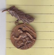 T 3/ PL Milit.6) 11 > Médaille > Militaire (1918 1978 Anciens Combattants )  (Fmt Voir Le Scan 1 Cm Entre 2 Trais) - Francia