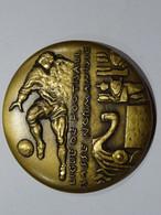 Médaille Bronze LIGUE DE FOOTBALL BASSE NORMANDIE       65 Mm 154 G TBE - Sin Clasificación