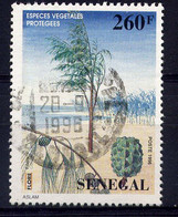 SÉNÉGAL - 1201° - FILAO - Senegal (1960-...)