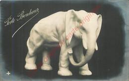 Porte Bonheur .  Elephant BLANC ; - Ohne Zuordnung