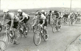 ( CYCLES  )( CYCLISTES  )  ( COURSE )( PHOTO MACRON )( AULNAY SOUS BOIS ) 20 SEP 1981 - Wielrennen