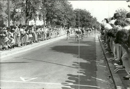 ( CYCLES  )( CYCLISTES  )  ( COURSE )( PHOTO MACRON )( AULNAY SOUS BOIS ) - Wielrennen