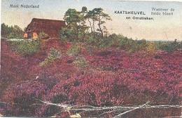 Kaatsheuvel, Mooi Nederland, Kaatsheuvel En Omstreken / Wanneer De Heide Bloeit - Kaatsheuvel