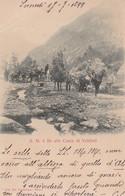 1899-Cuneo Sua Maest� Il Re Alle Cacce Di Valdieri, Cartolina Viaggiata - Unclassified