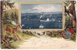 1904-Germania Cartolina A Rilievo Con Veduta Di Kempten Viaggiata - To Identify