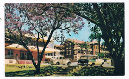 AUS-338   IPSWICH : General Hospital - American Samoa