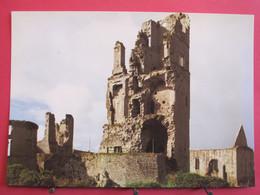 Visuel Très Peu Courant - Irlande - Askeaton - Desmond Castle - Limerick - Parfait état - R/verso - Limerick