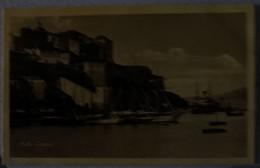 20 Corse Carte Photo  Calvi 1528 - Calvi