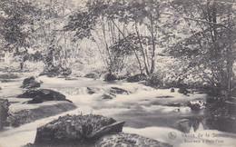 Vallée De La Semois, Sous Bois à Petit Fays (pk72957) - Vresse-sur-Semois