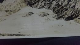 CP VERITABLE PHOTO REAL PHOTO ANGEL GLACIER MOUNTAIN EDITH CAVELL JASPER NARIONAL PARC - Jasper