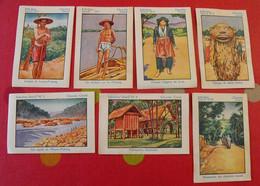 "7 Images Album Chocolat Cémoi ""album N° 4 Indochine"". Lot 430. Vers 1960. - Other"