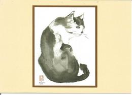 CHAT Dessin - Gatos