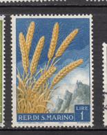 Saint-Marin, San Marino, Agriculture, Blé, Wheat - Landbouw