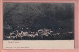 OLD POSTCARD -  ROMANIA -  BAILE TUSNAD - TUSNADFURDO - 1900'S - Roemenië