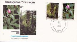 ABIDJAN   Timbre Et Enveloppe Premier Jour      LES PLANTES IVOIRIENNES   Costus Afer        Omphalocarum Elatum - Ivoorkust (1960-...)