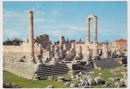 TURKEY - AK 386672 Didim - Söke - Temple Of Apollo - Turquia