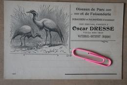 BOISTFORT : OSCAR DRESSE, Villa Des IRIS - Oiseaux De Parc Et De Faisanderie - Watermael-Boitsfort - Watermaal-Bosvoorde