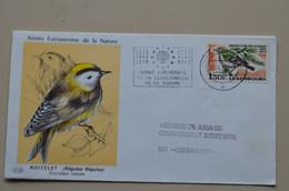 Luxembourg 1970 FDC Année Européenne De La Nature Protection Des Oiseaux Roitelet Bird Oiseau - Pájaros Cantores (Passeri)