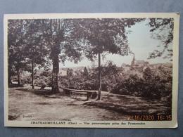 CPA 18 Cher CHATEAUMEILLANT  - Vue Panoramique Prise Des Promenades  , Au Loin L' église 1930 - Châteaumeillant