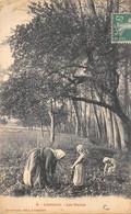 Liancourt         60        Paysannes Travaillant Dans Les Marais     (voir Scan) - Liancourt