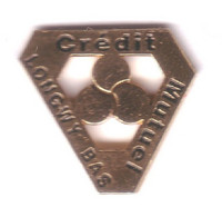 S229 Pin's BANQUE BANK CREDIT MUTUEL LONGWY BAS MOSELLE Achat Immédiat - Banks