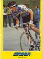 Carte Cyclisme Coureur Cycliste Pedro Delgado - Ciclismo