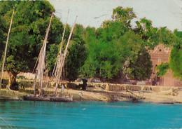 SUDAN - The Nile And The Nature In Southern Sudan 1960's - Circulated - Sudan