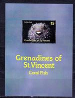 GRANADINA DE SAN VICENTE Nº HB 19 - Vissen
