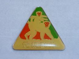 Pin's SINGE ARAIGNEE ? - Animals