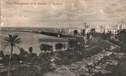 CADIZ. VISTA GENERAL DE LA ALAMEDA DE APOCADA. - Cádiz