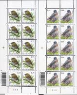 Ref. 214840 * NEW *  - BELGIUM . 2005. BIRDS. AVES - Nuevos